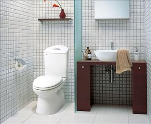 Sử dụng bồn cầu 2 khối đa năng cho phòng tắm nhỏ